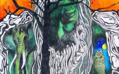 Beyond 9/11: Humans Healing Nature