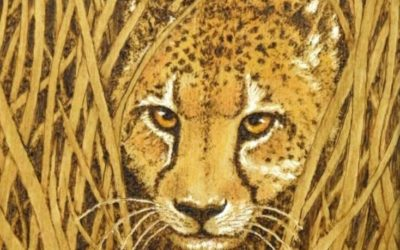Animal Wisdom, Animal Soul: Lessons of the Wild Things